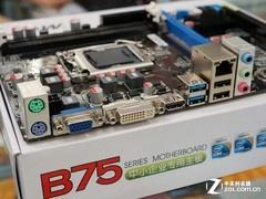 IVB平台依然坚挺 杰微B75小板报价499元